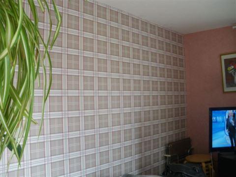 castorama pose papier peint intisse reims prix travaux electricite forum rouleau papier peint zen. Black Bedroom Furniture Sets. Home Design Ideas